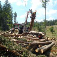 Analiza izvajanja gozdarskih del med člani strojnih krožkov