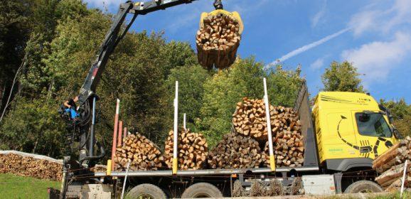 Povečanje izkoriščanja potenciala gozdov s pomočjo Programa razvoja podeželja